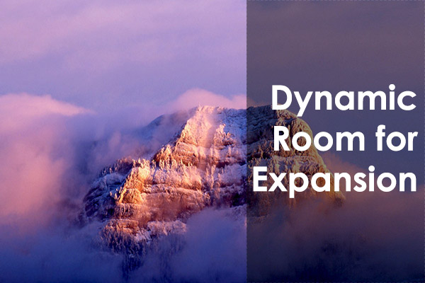 Dynamic Expansion